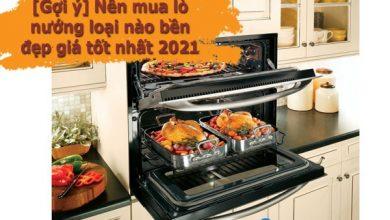 [Gợi ý] Nên mua lò nướng loại nào bền đẹp giá tốt nhất 2021